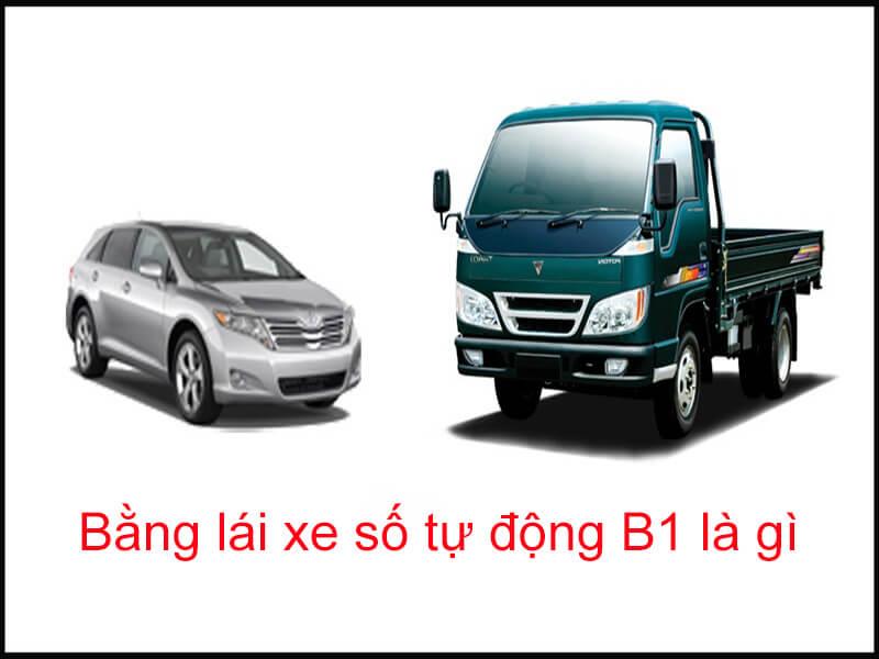 Học bằng lái xe số tự động B1