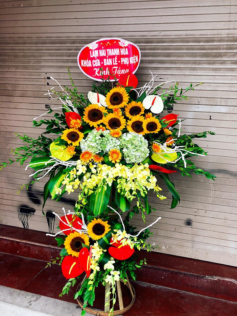 Hoa Hướng Dương tặng khai trương