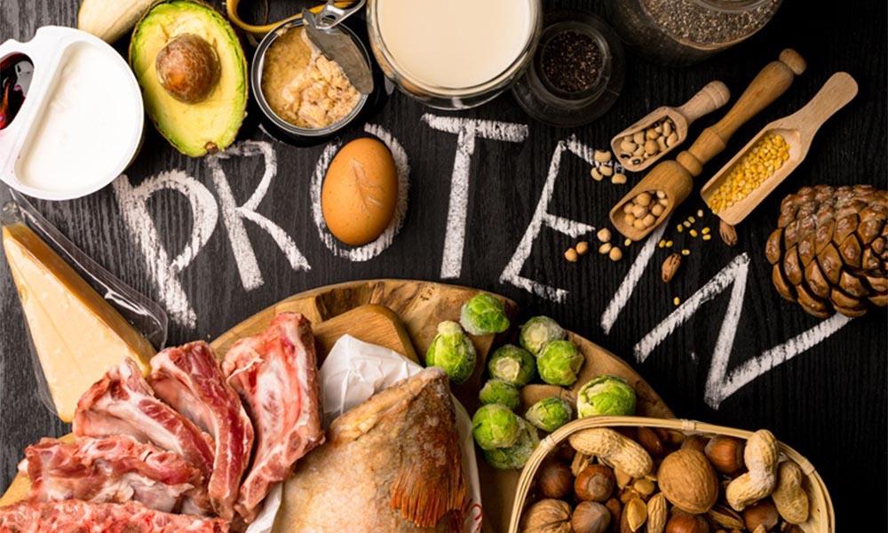 Bản chất của protein